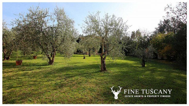 Villa with outbuildings for sale in Santa Maria a Monte Pisa Tuscany Italy